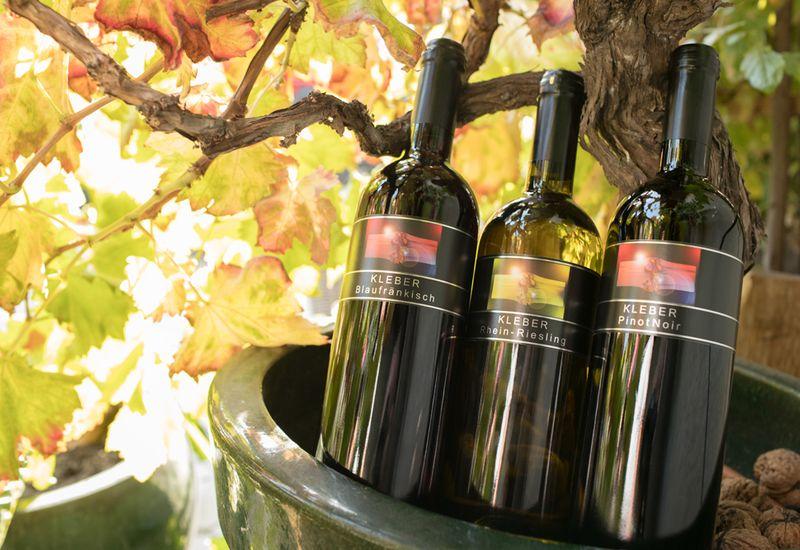Rotweine der Familie Kleber