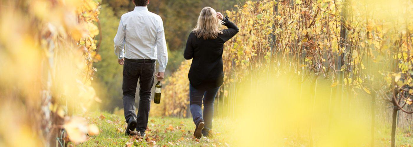 Spezialitäten des Weingut Ziegers