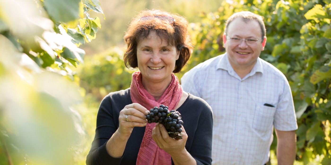 Herr und Frau Kleber im Weingarten