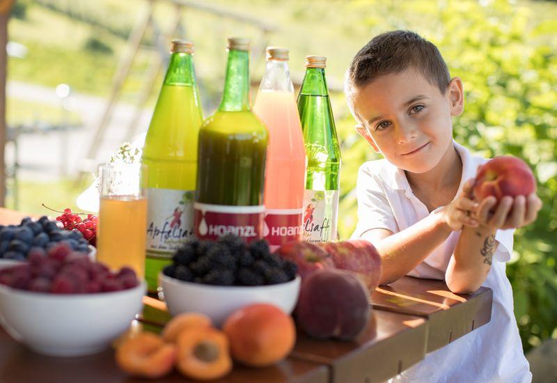 Obst und Fruchtsäfte vom Obstgut Hoanzl
