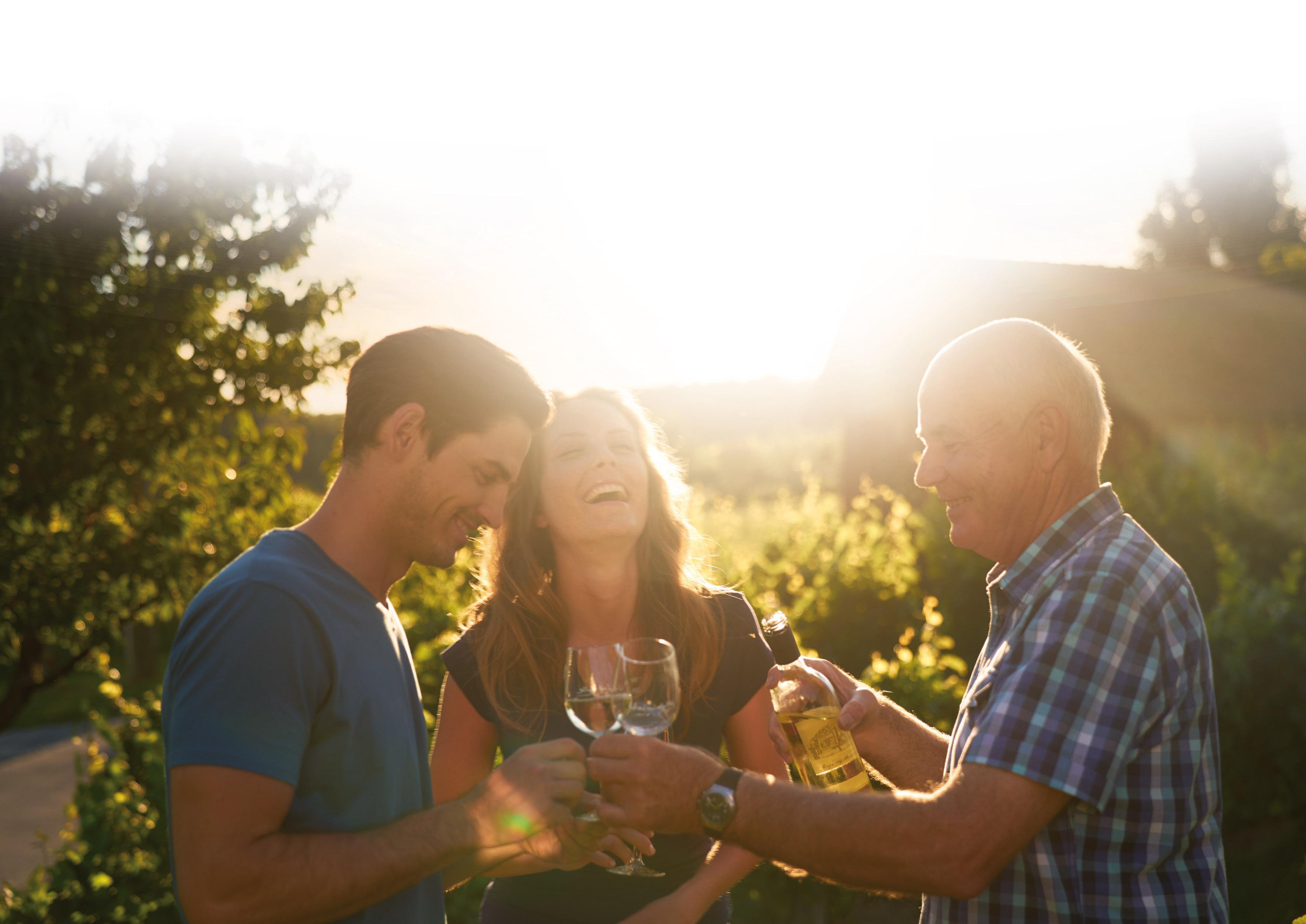 Wein trinken bei Sonnenuntergang